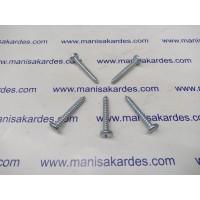 Saç Vidası 5.5x38 mm Silindir Baş Türk Malı Adet Fiyatı